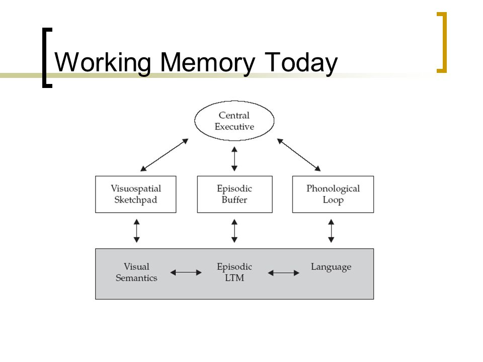 Working Memory Today