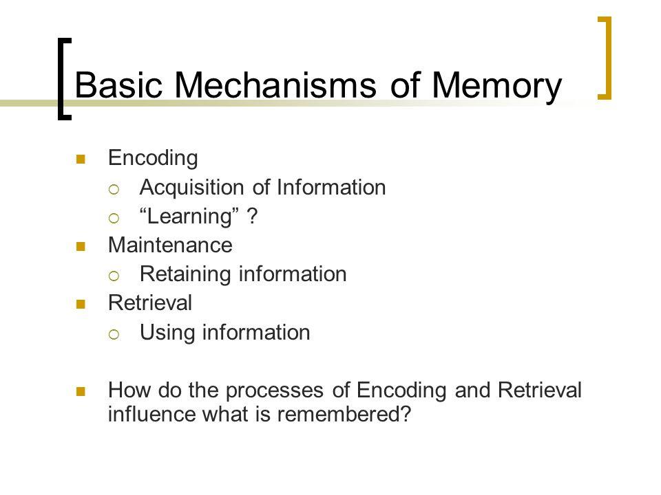 Basic Mechanisms of Memory