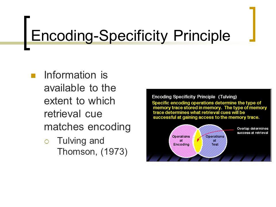 Encoding-Specificity Principle