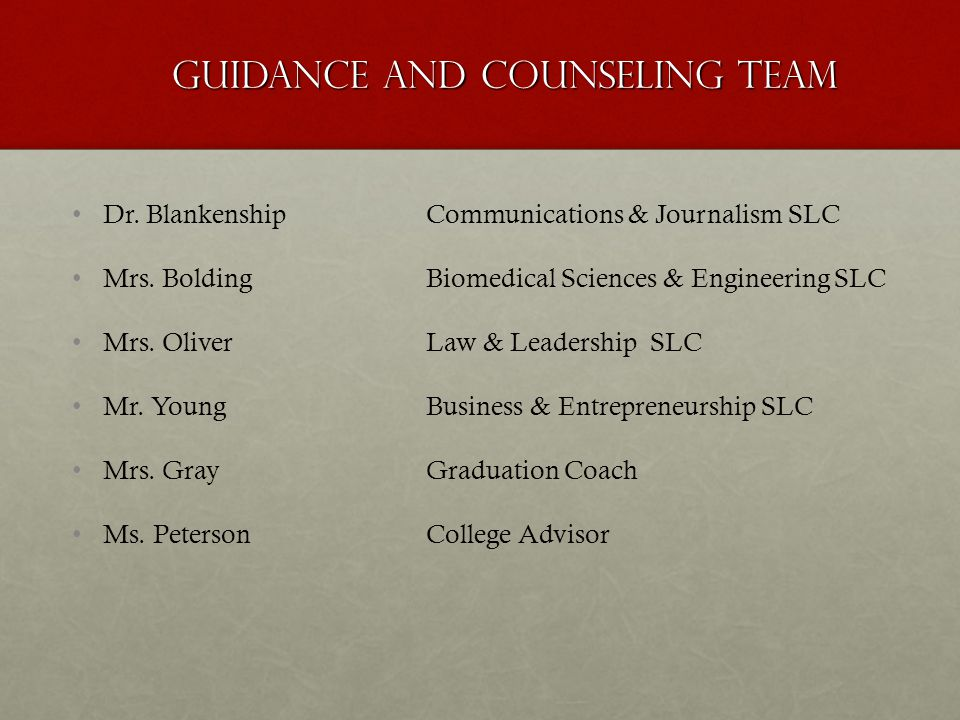 Guidance and Counseling Team
