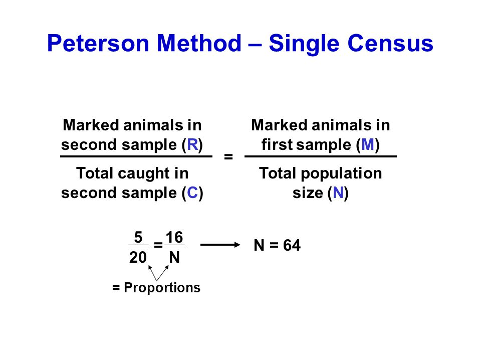 Peterson Method – Single Census