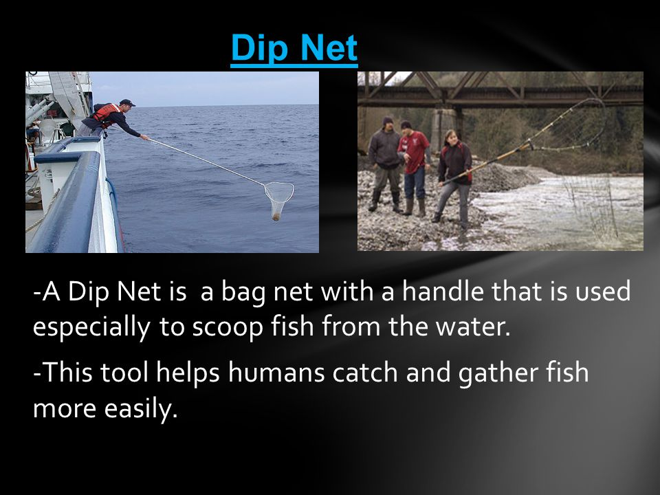 Dip Net