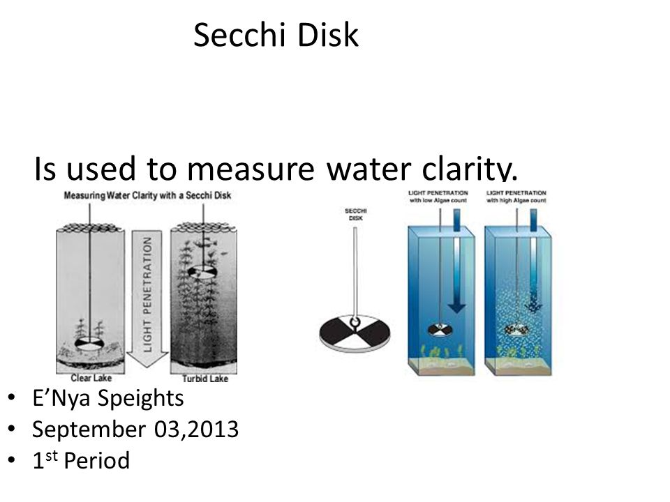 Secchi Disk Is used to measure water clarity.