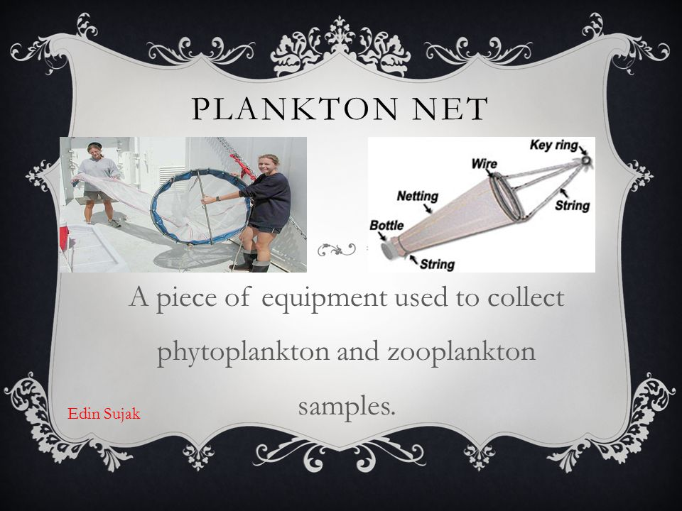 Plankton Net A piece of equipment used to collect phytoplankton and zooplankton samples. Edin Sujak