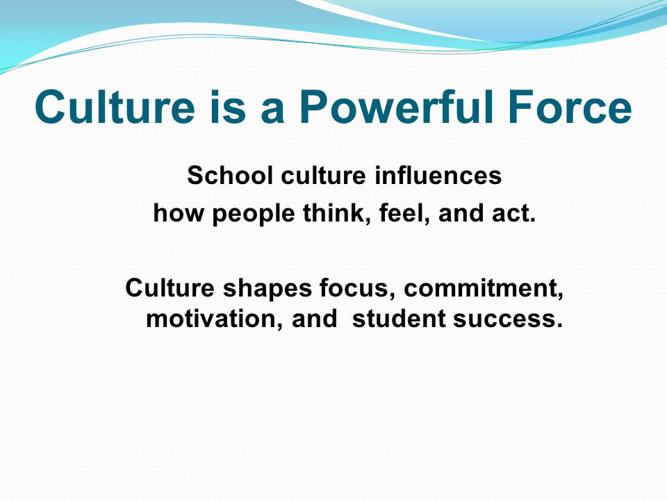 Culture is a Powerful Force