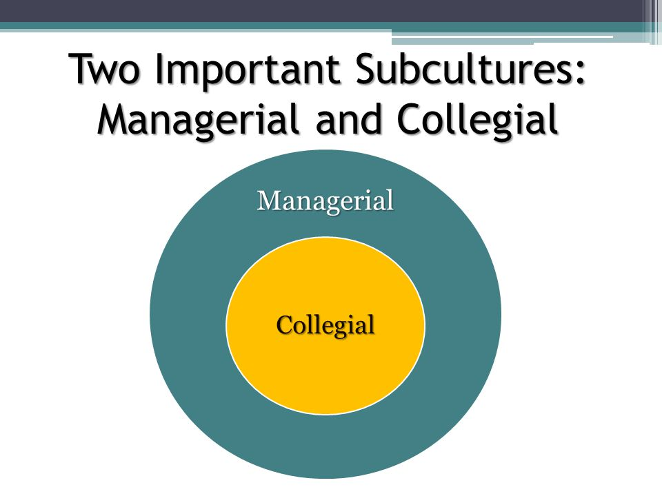 Two Important Subcultures: Managerial and Collegial