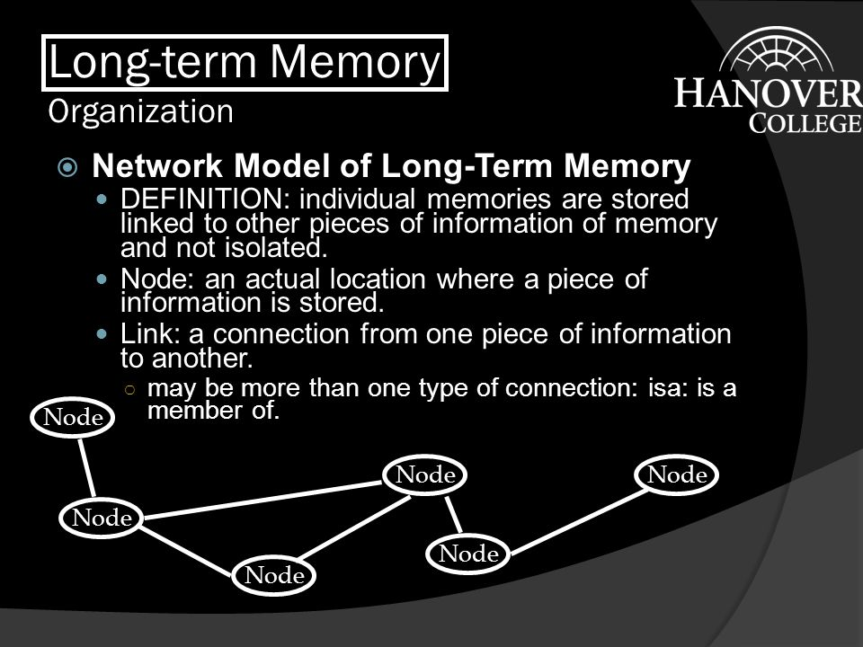 Long-term Memory Organization