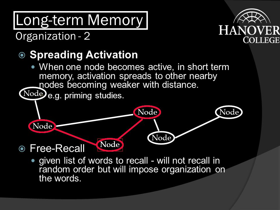 Long-term Memory Organization - 2