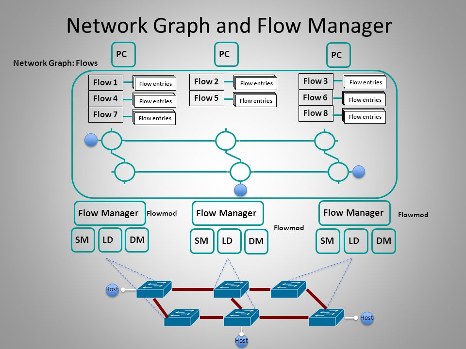 Network Graph and Flow Manager