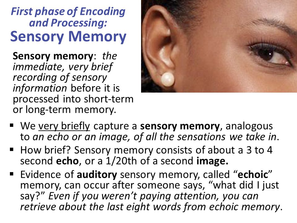 First phase of Encoding and Processing: Sensory Memory