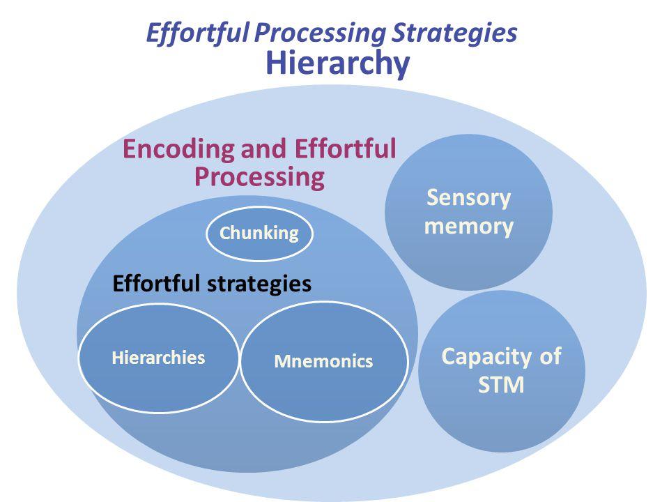 Effortful Processing Strategies Encoding and Effortful Processing