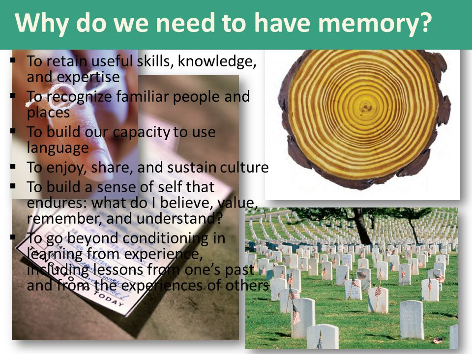 Why do we need to have memory