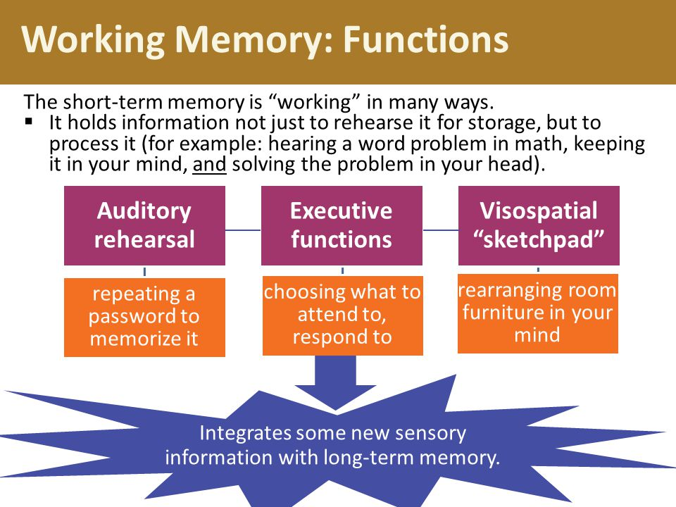 Working Memory: Functions