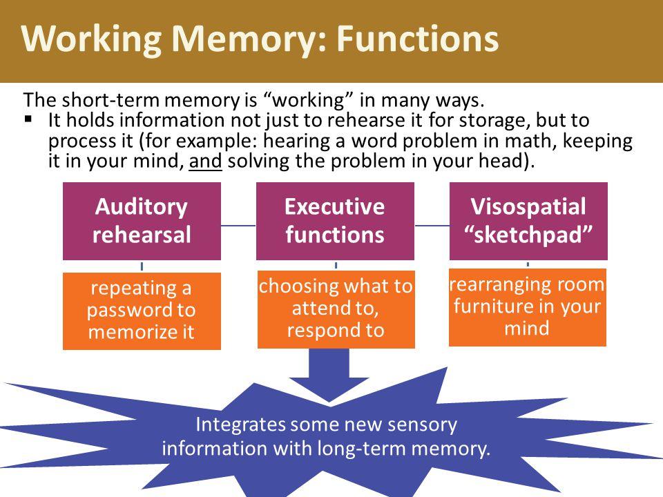 Working Memory: Functions