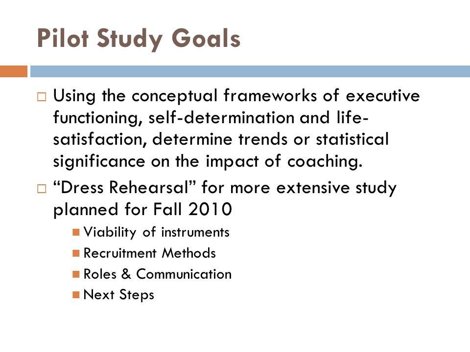 Pilot Study Goals