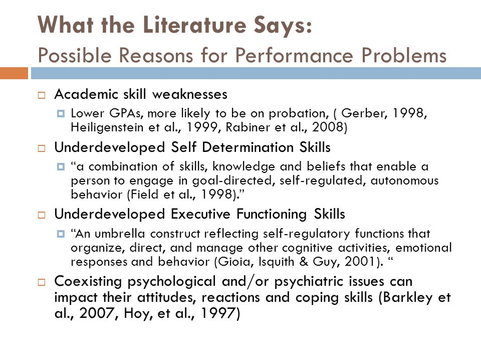 What the Literature Says: Possible Reasons for Performance Problems