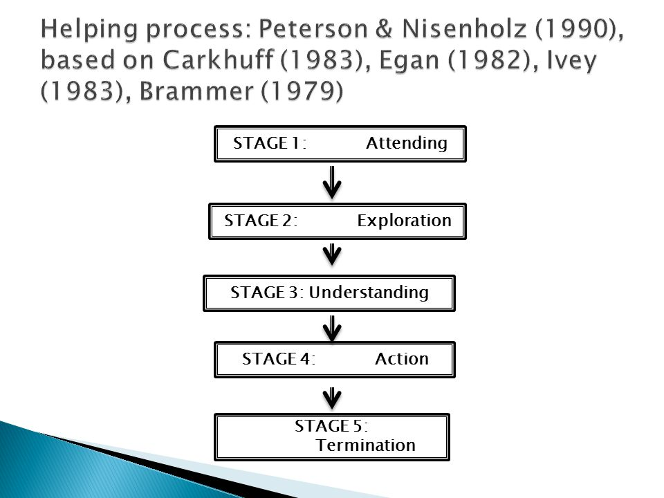Helping process: Peterson & Nisenholz (1990), based on Carkhuff (1983), Egan (1982), Ivey (1983), Brammer (1979)