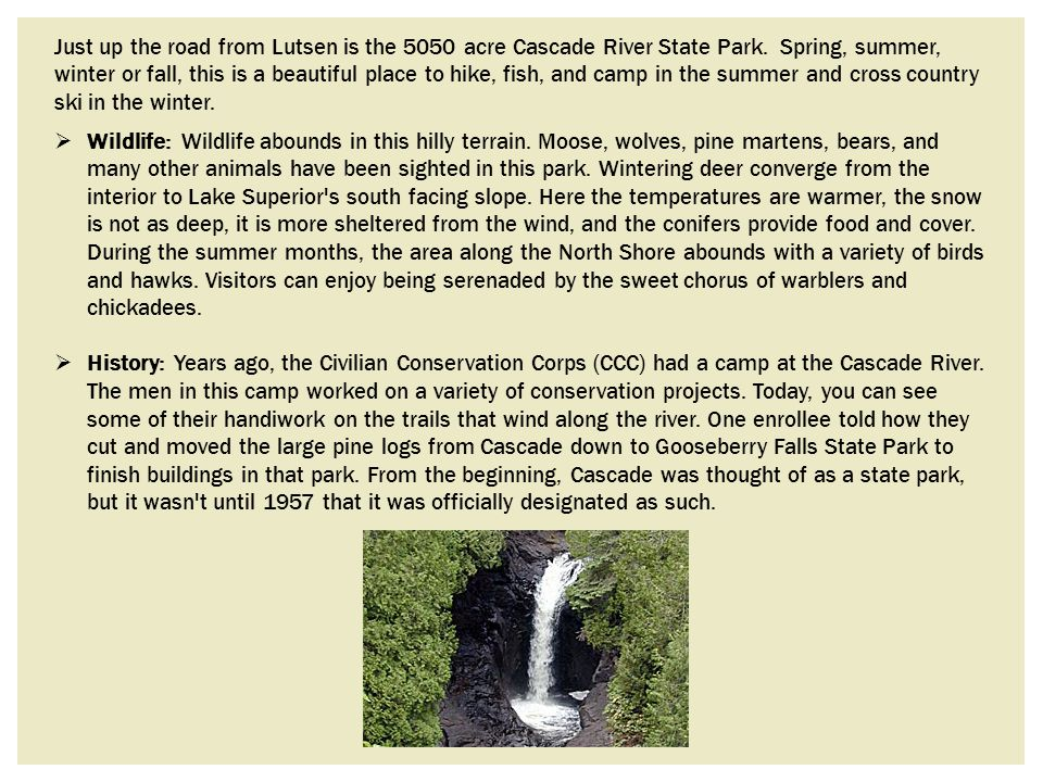 Just up the road from Lutsen is the 5050 acre Cascade River State Park