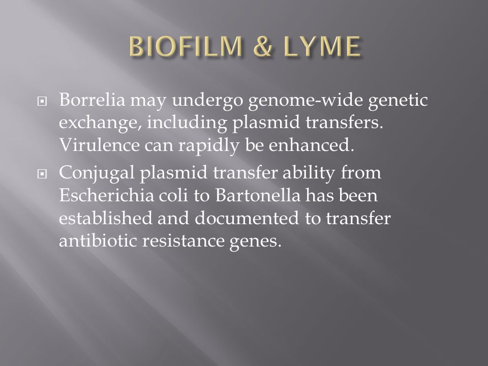 BIOFILM & LYME Borrelia may undergo genome-wide genetic exchange, including plasmid transfers. Virulence can rapidly be enhanced.