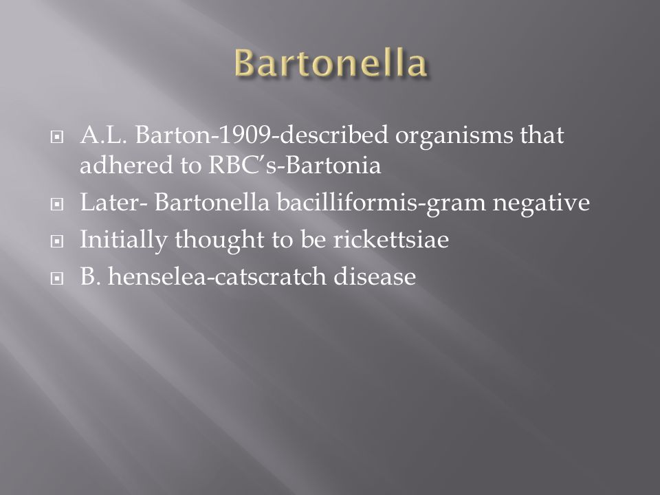 Bartonella A.L. Barton-1909-described organisms that adhered to RBC's-Bartonia. Later- Bartonella bacilliformis-gram negative.