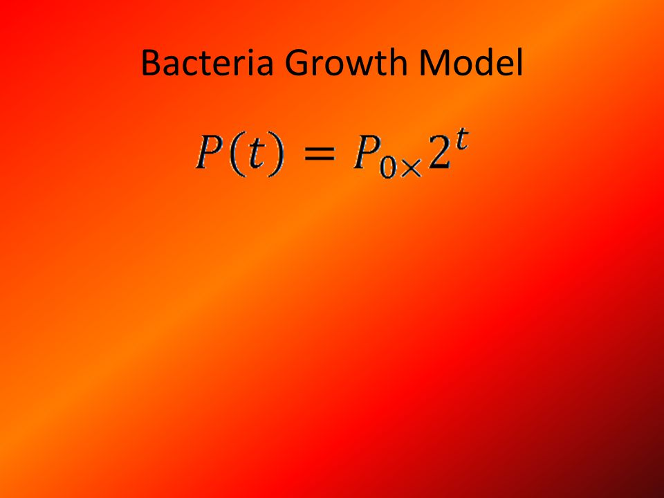 Bacteria Growth Model