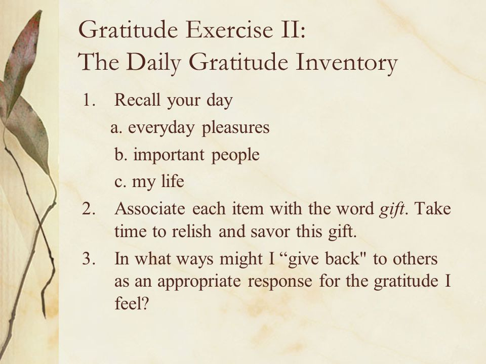 Gratitude Exercise II: The Daily Gratitude Inventory