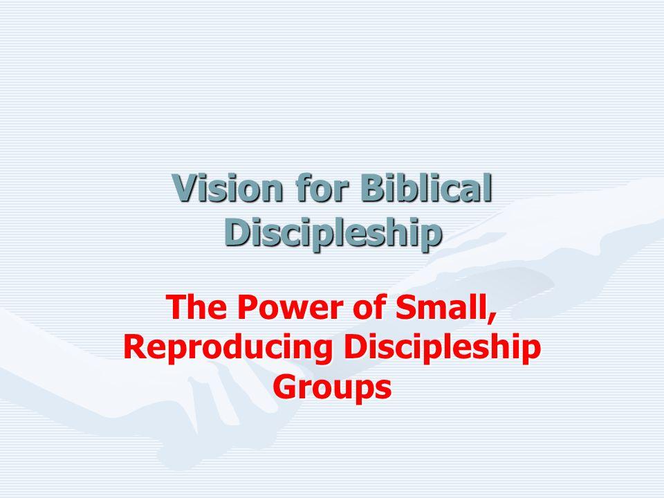 Vision for Biblical Discipleship