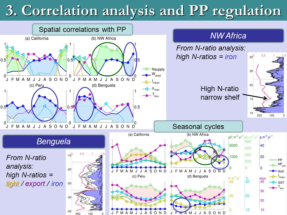3. Correlation analysis and PP regulation