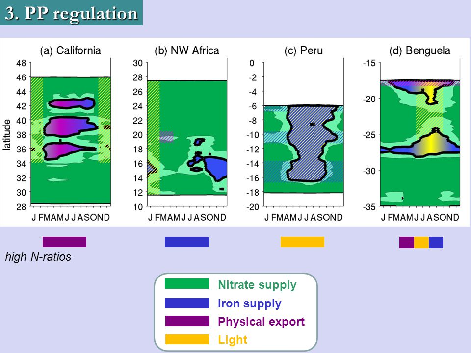 3. PP regulation high N-ratios Nitrate supply Iron supply