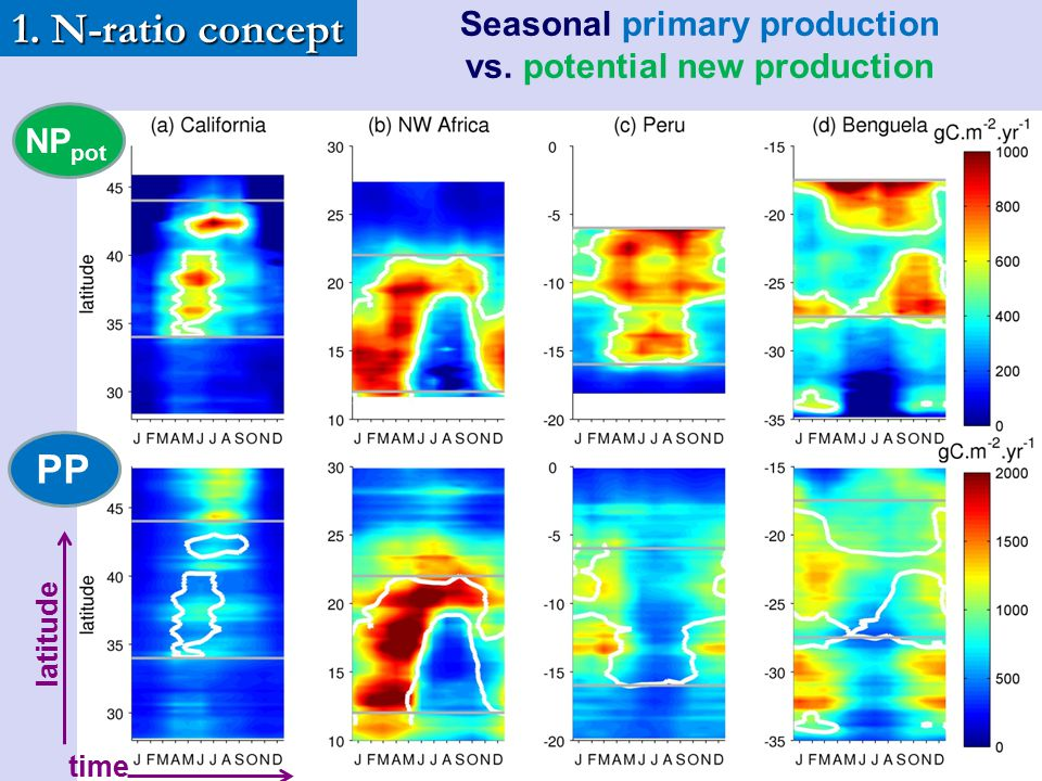 Seasonal primary production vs. potential new production