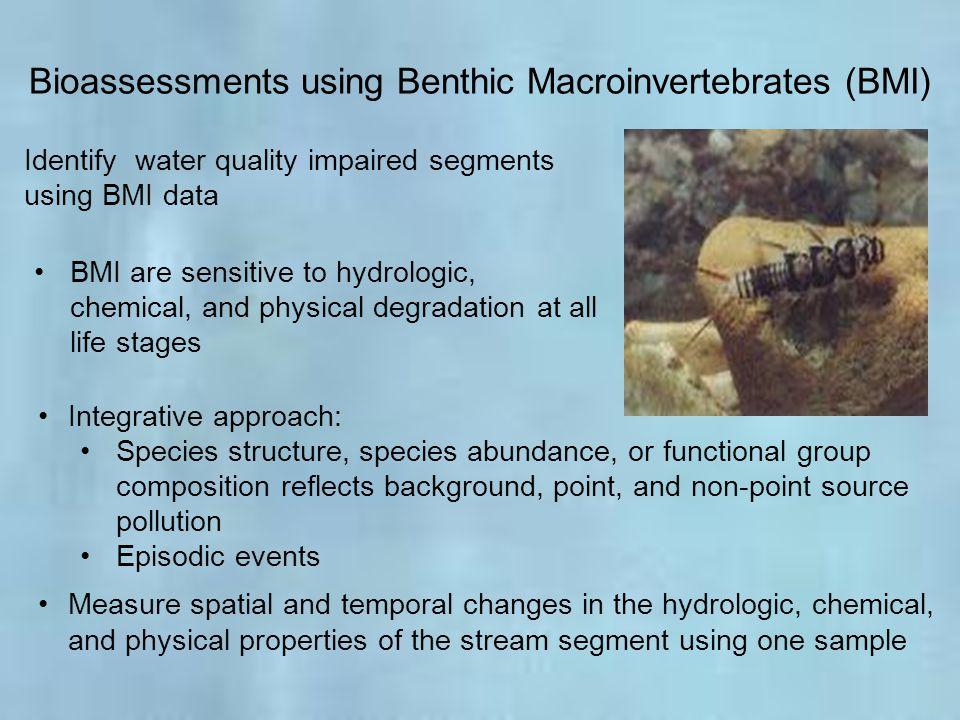 Bioassessments using Benthic Macroinvertebrates (BMI)