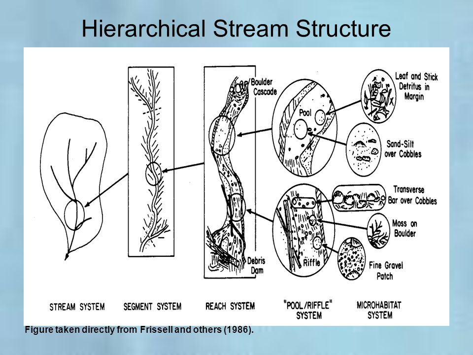 Hierarchical Stream Structure