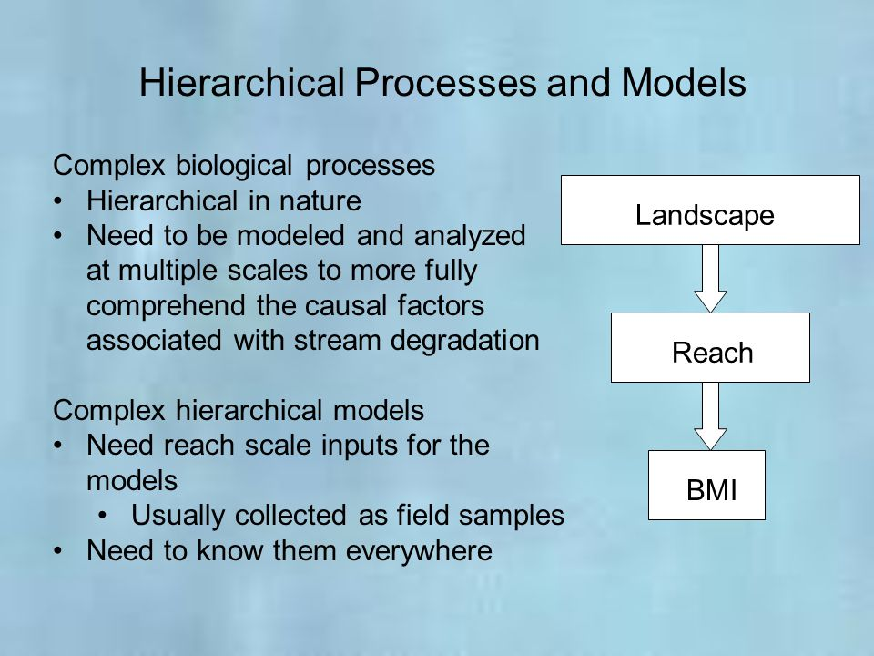 Hierarchical Processes and Models