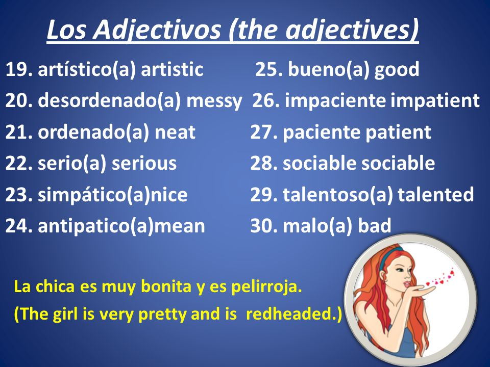 Los Adjectivos (the adjectives)