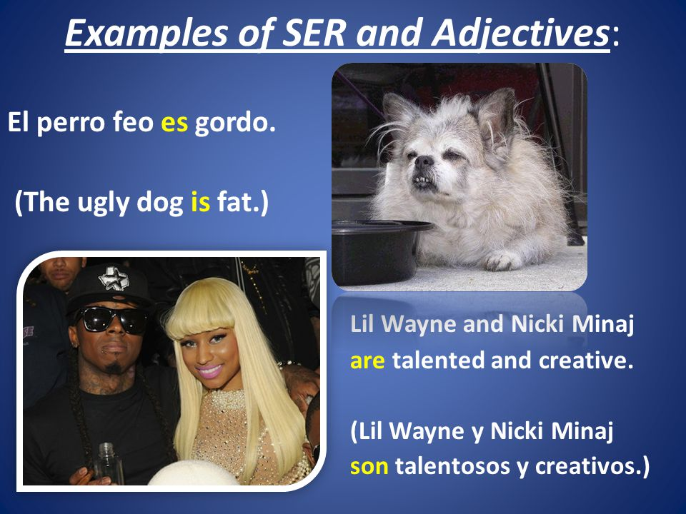 Examples of SER and Adjectives: