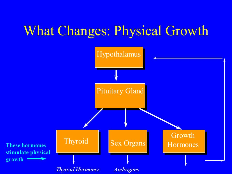 What Changes: Physical Growth