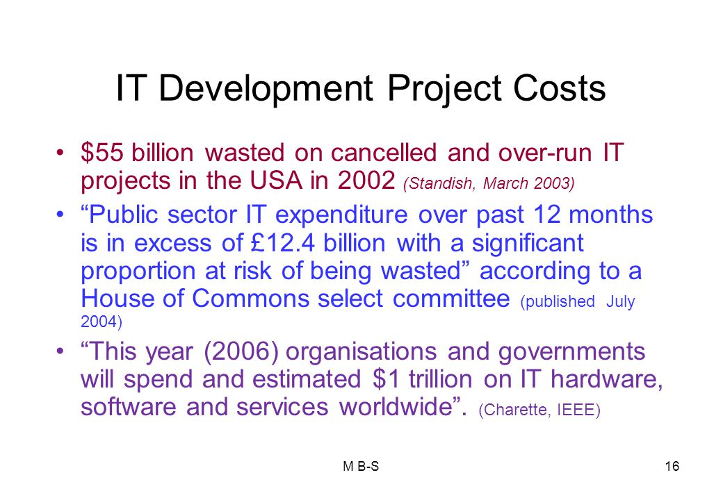 IT Development Project Costs
