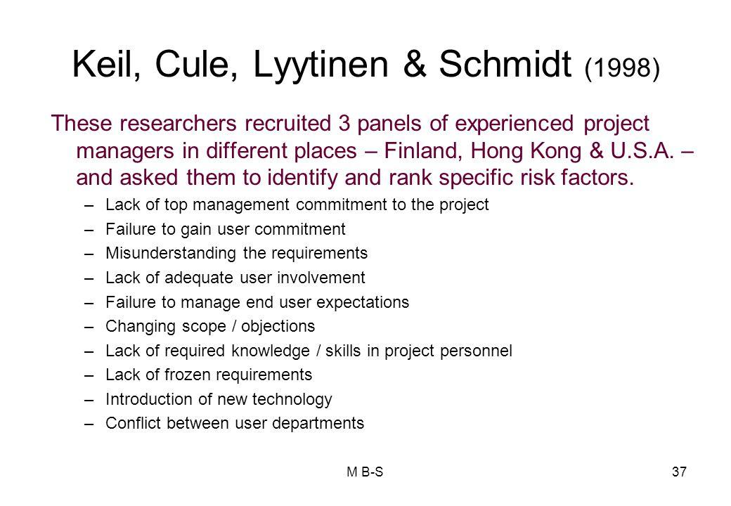 Keil, Cule, Lyytinen & Schmidt (1998)