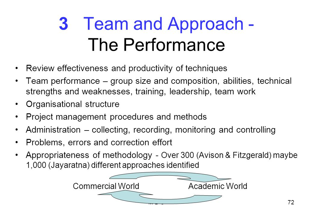 3 Team and Approach - The Performance