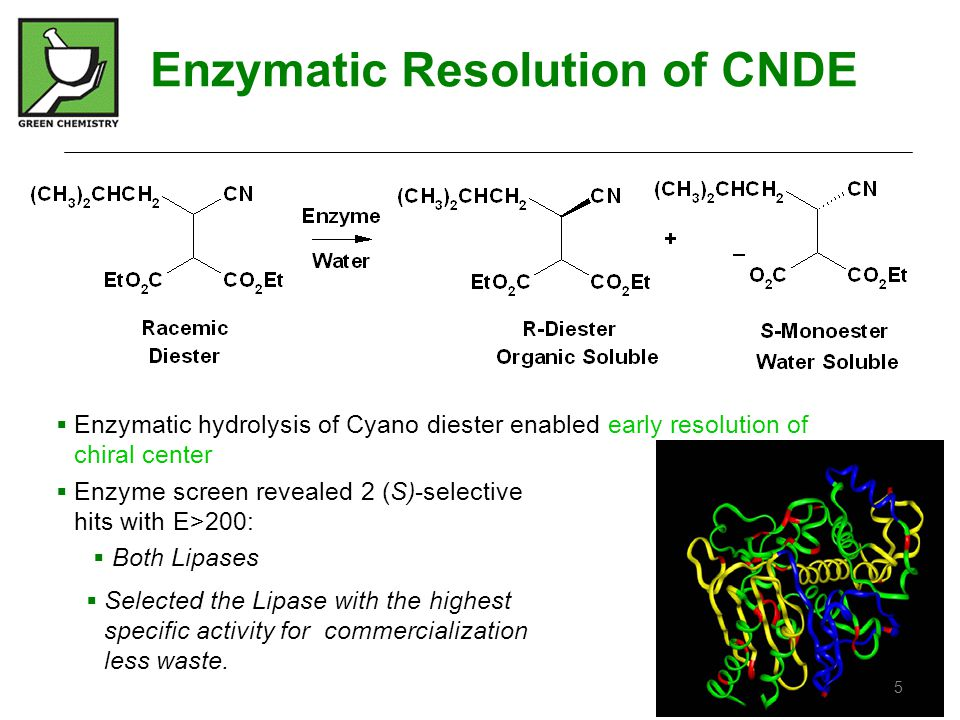 Enzymatic Resolution of CNDE
