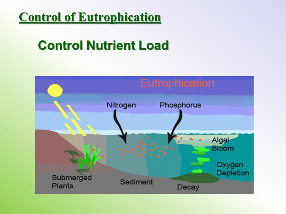 Control of Eutrophication