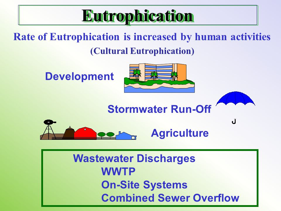 (Cultural Eutrophication)