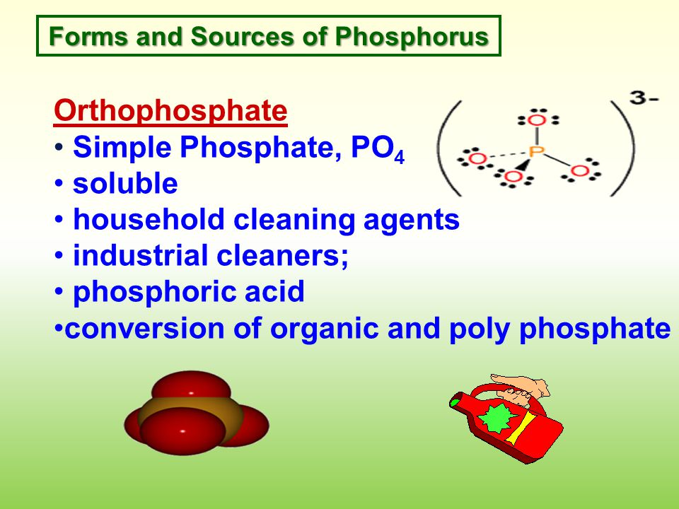 Forms and Sources of Phosphorus