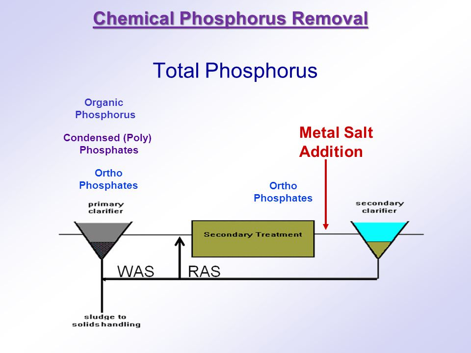 Total Phosphorus Chemical Phosphorus Removal Metal Salt Addition