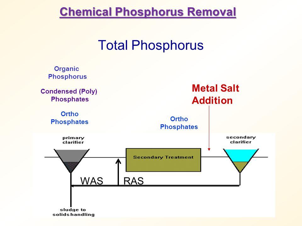 Total Phosphorus Chemical Phosphorus Removal Metal Salt Addition WAS