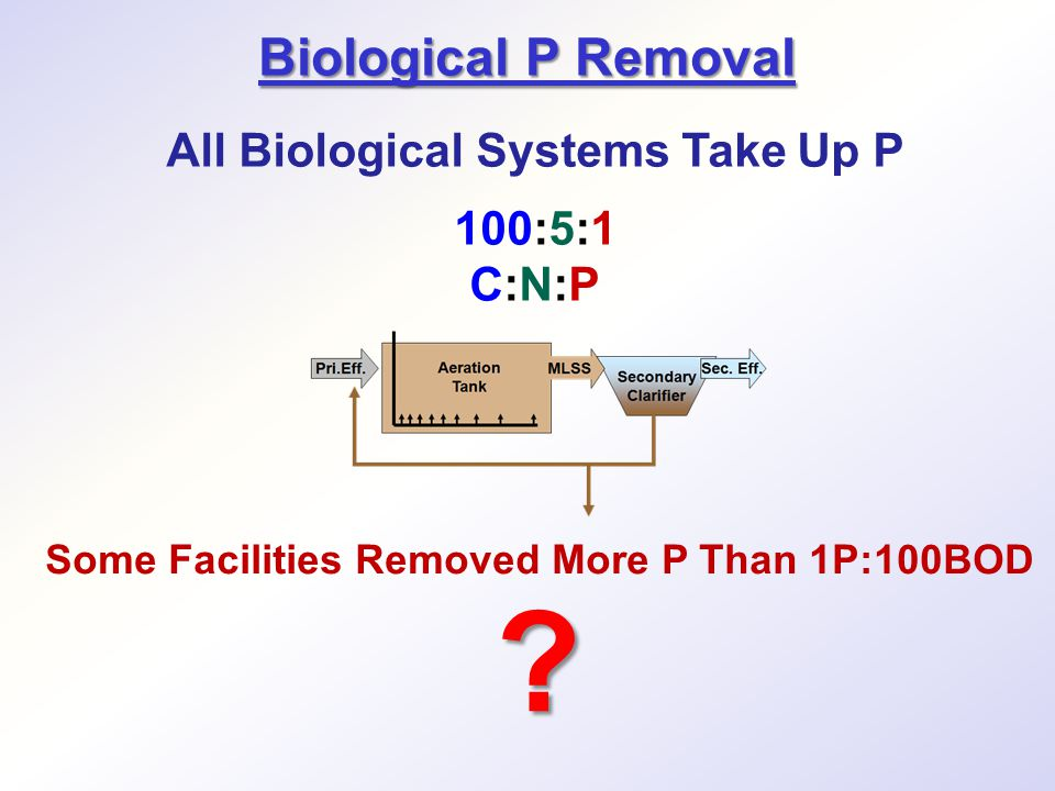 All Biological Systems Take Up P