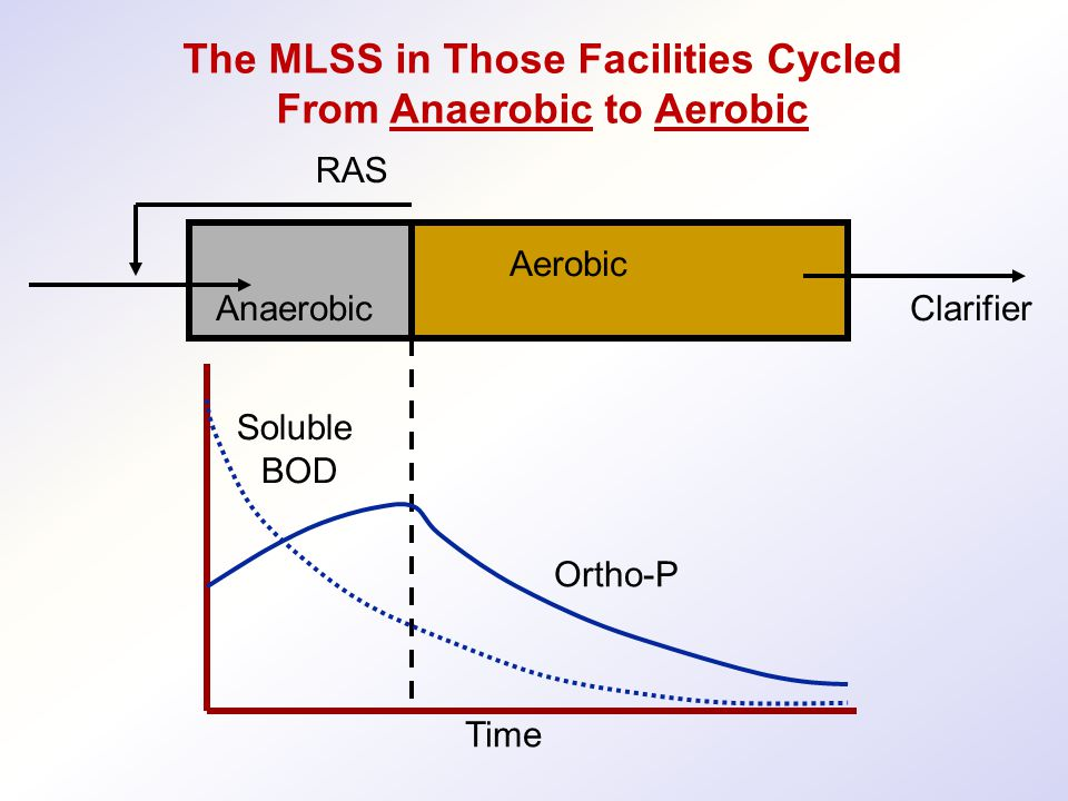 The MLSS in Those Facilities Cycled From Anaerobic to Aerobic