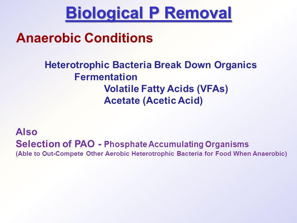 Biological P Removal Anaerobic Conditions