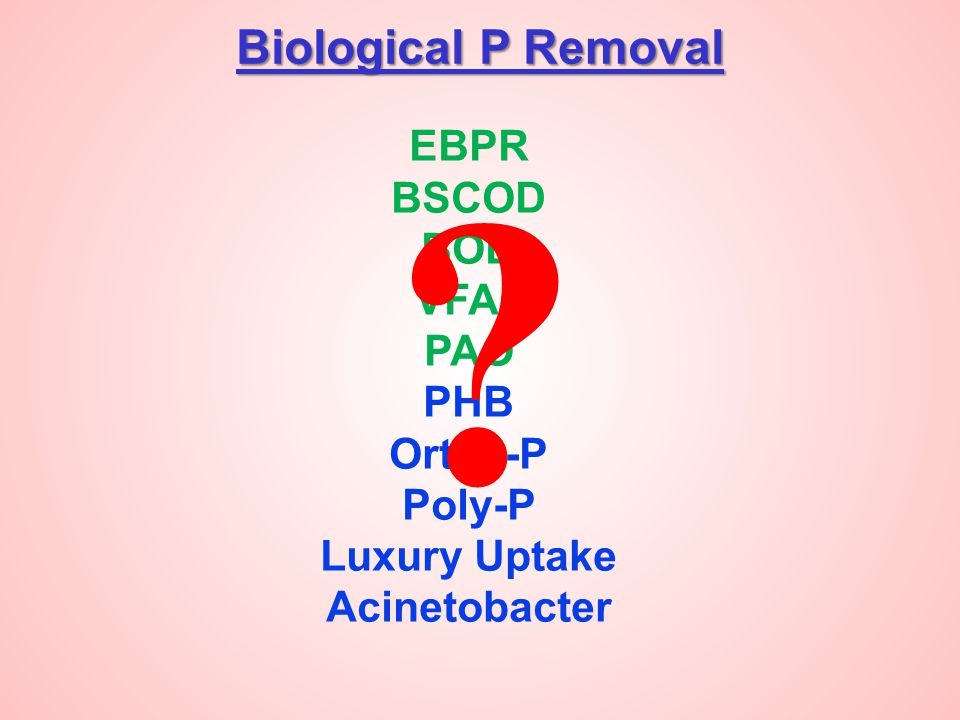 Biological P Removal EBPR BSCOD BOD VFAs PAO PHB Ortho-P Poly-P