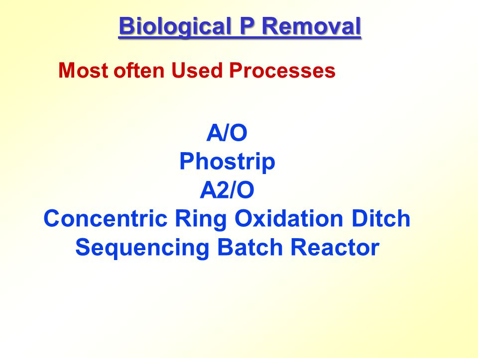 Concentric Ring Oxidation Ditch Sequencing Batch Reactor